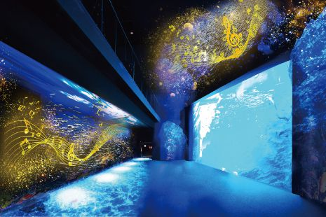 【終了】水族館で日本酒を。仙台で「魚を肴に 日本酒ナイト水族館」開催