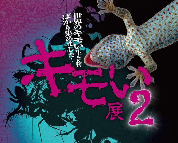 【開催中】悲鳴をあげる人が続出。噂の「キモい展2」が梅田でも開催