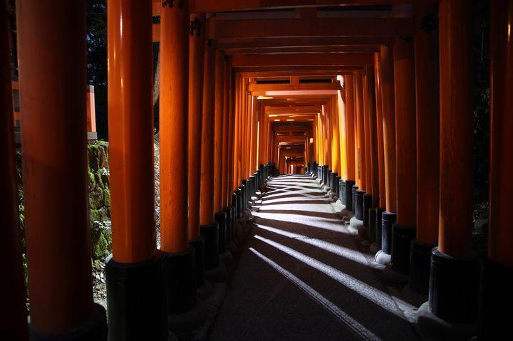 ディープな京都を堪能しよう。『夜の伏見稲荷大社』がすごい。