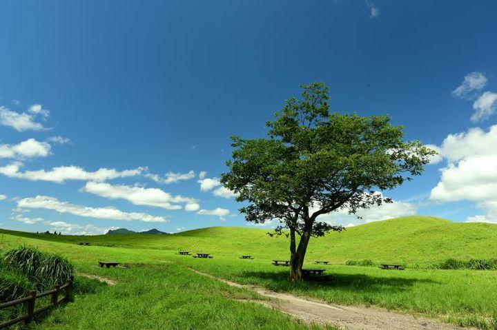 身体も心もリフレッシュ!奈良県・曽爾村で出会える自然・絶景4選