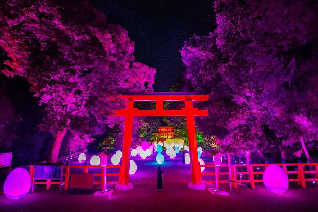 京都で「ひんやり旅」を楽しもう!この夏京都でしたい5つのこと