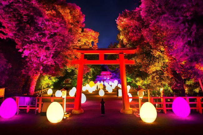 """夜を楽しむイベントが盛りだくさん。関西地方の""""今週したいこと""""7選"""