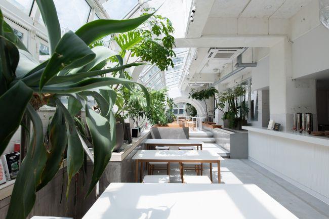 瀬戸内を存分に楽しもう。「KIRO 広島 -THE SHARE HOTELS-」グランドオープン
