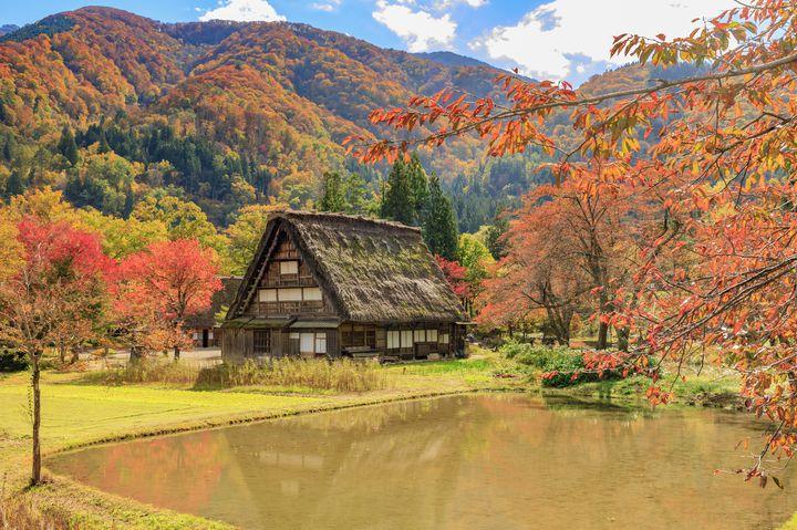 風情ある日本の秋。合掌造りで有名な「白川郷」が紅葉で彩られる