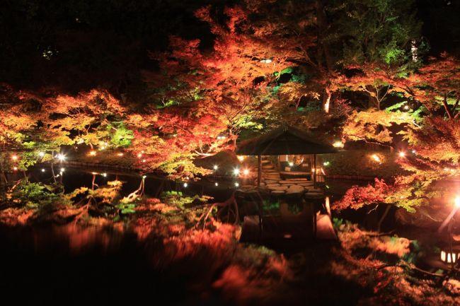 【開催中】都内でも美しい紅葉を楽しみたい。八芳園で秋の大型イベント開催