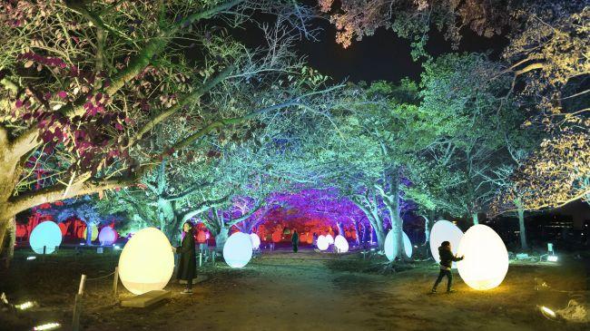 福岡城跡にチームラボが作り出す光のアート空間。「光の祭 2019-2020」開催