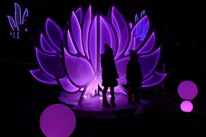 和の空間で幻想的な光に包まれて。長野「善光寺イルミネーション」開催