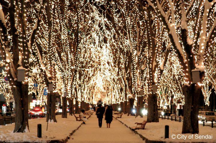街一杯のイルミネーションを楽しむ!SENDAI 光のページェントの魅力4選
