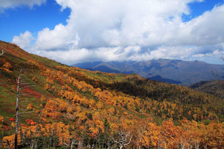 紅葉を見ながら山登り!紅葉登山にぴったりの全国紅葉スポット10選