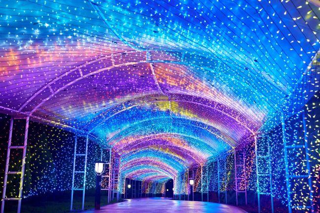 """待ちにまったクリスマスウィーク!関東地方の""""今週したいこと""""8選"""