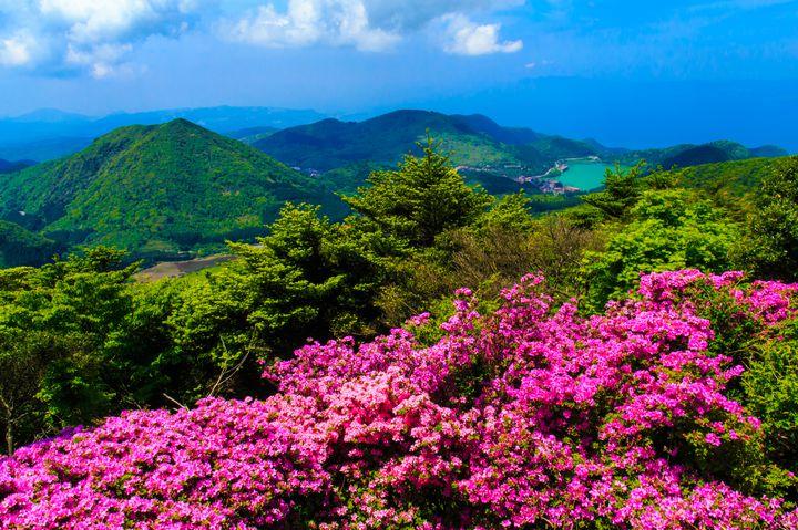 【終了】スピリチュアルな満天の星空を。長崎で「雲仙仁田峠プレミアムナイト」開催
