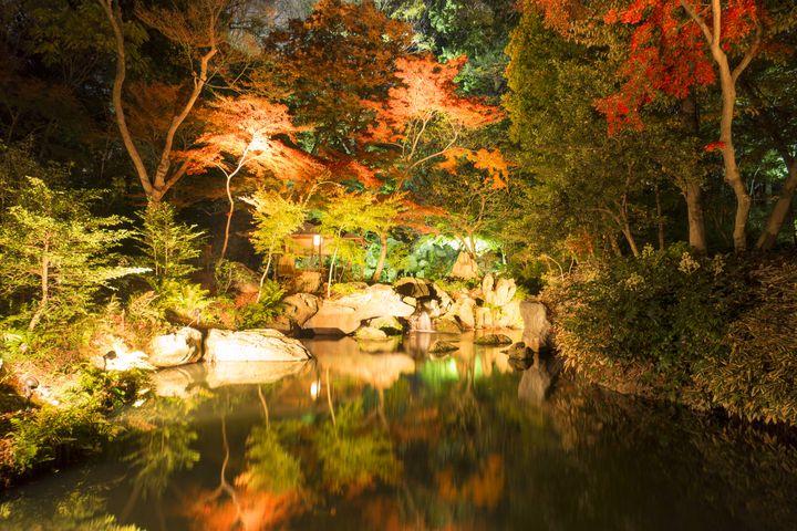 オススメは夜!東京で一番ロマンティックな紅葉スポット「六義園」とは