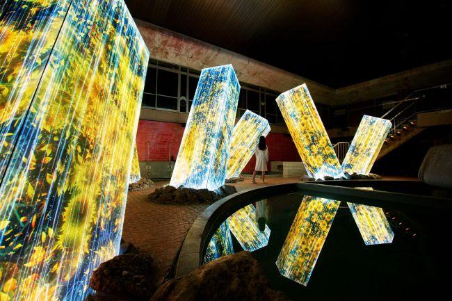 アートの舞台は森!チームラボ 「かみさまがすまう森」佐賀で今年も開催