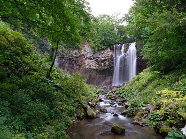 「国営滝野すずらん丘陵公園」が今シーズンようやく開園!その魅力をまとめてみました