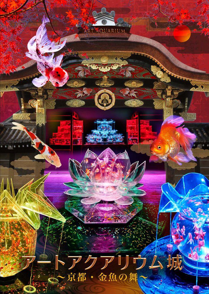 """艶やかな〝和の世界""""!「アートアクアリウム城 ~京都・金魚の舞~」開催"""