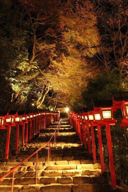 京の秋の夜空を彩る紅葉のライトアップ。「京の奥座敷・貴船もみじ灯篭」 開催