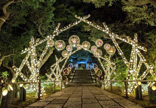 1,300本の竹あかりが灯す、花日和の夜。「HANAあかり」開催
