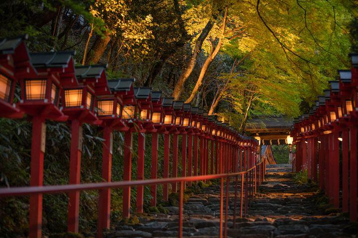 """【終了】さて、11月は何しようか?関西地方の""""今週したいこと""""LIST"""