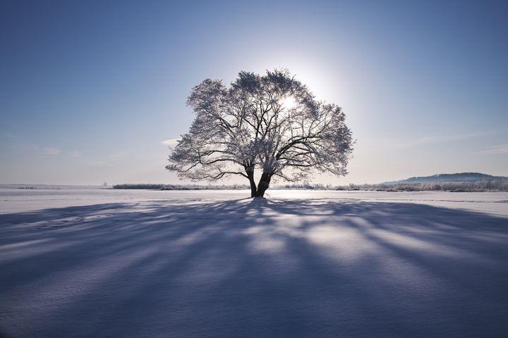 冬の朝にしか出会えない絶景がある。早起きして行きたい全国の冬の絶景まとめ