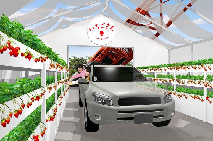 【終了】車に乗ってイチゴ狩り!「いちごさんドライブスルー」東京タワーにて開催