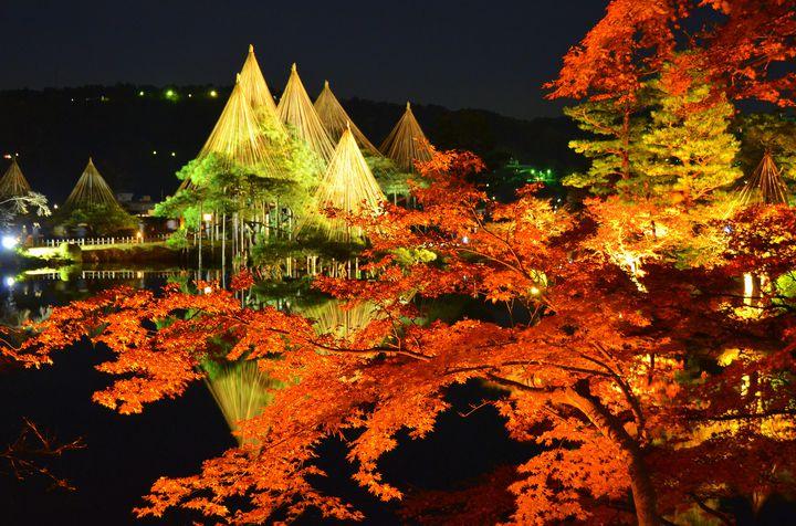"""日本が誇る、美しき秋。金沢""""兼六園""""の紅葉が今年も美しすぎると話題に"""