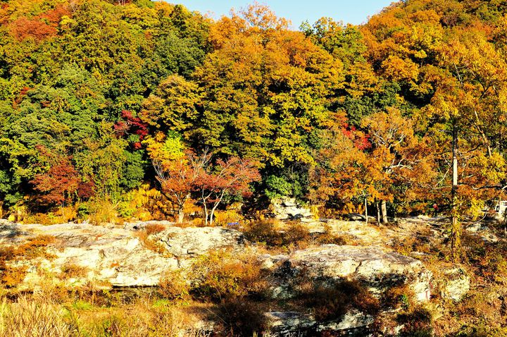 埼玉で紅葉と言えばここ!ライトアップもある「長瀞」の紅葉が美しい