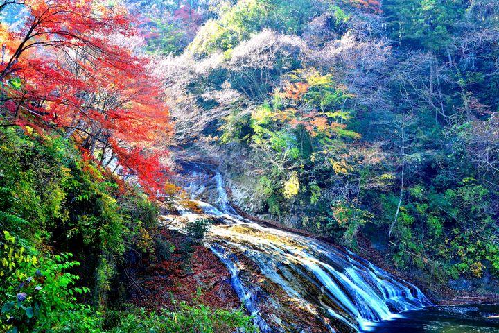 """ハイキング×紅葉といえばここ!千葉県""""養老渓谷""""の美しき紅葉を見に行こう"""