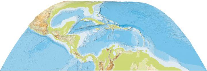 泳げるブタがいるビーチ!バハマの無人島が隠れ人気スポットに