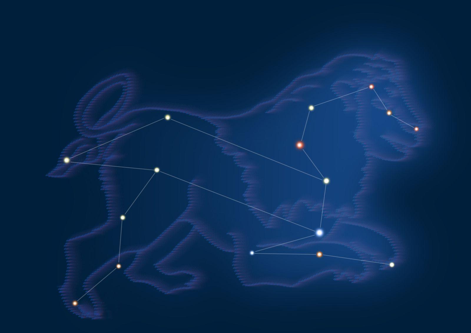 春に見えるのは「しし座」見ての通り獅子の形をしています。それにしても星座を見ていると昔の人の想像力に圧巻ですよね。