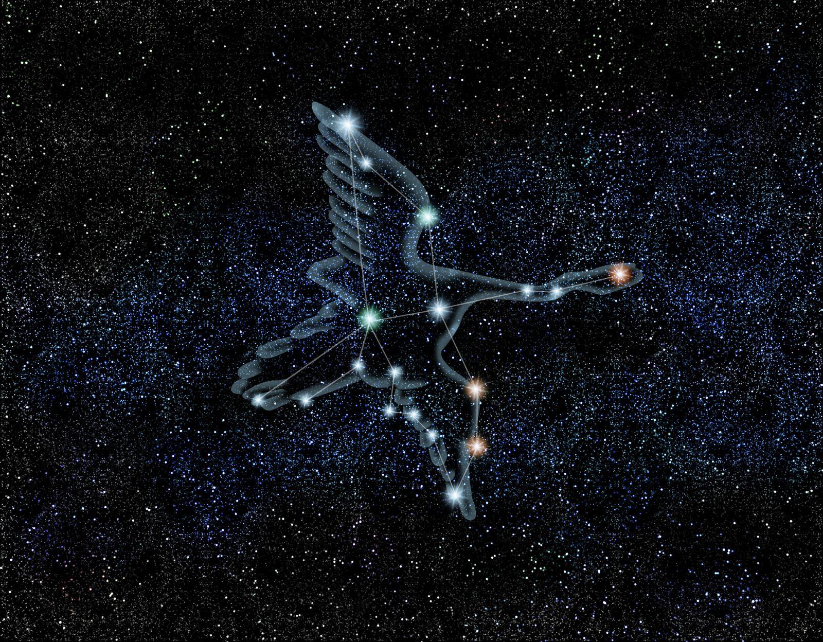 夏の星座は「はくちょう座」。大きな鳥が羽ばたいていく様子を思い浮かべてみましょう。