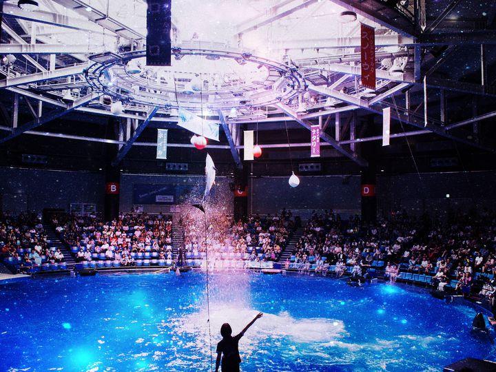 興奮と癒しが同時に味わえる!進化する水族館。関東で人気の水族館ランキングTOP5