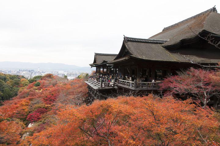 ライトアップも楽しめる!京都「清水寺」の紅葉がとにかく美しすぎると話題に