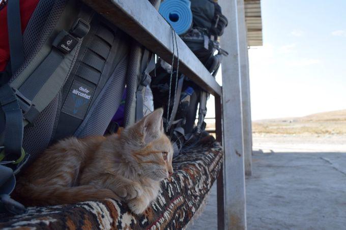 荷物は集落のお店に置かせてもらい、砂漠に繰り出します。