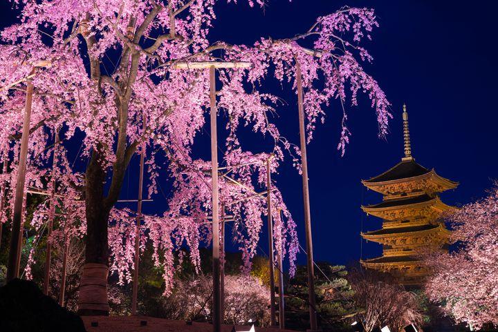 最後まで京都を満喫!夜でも楽しめる京都のおすすめ観光スポット6選