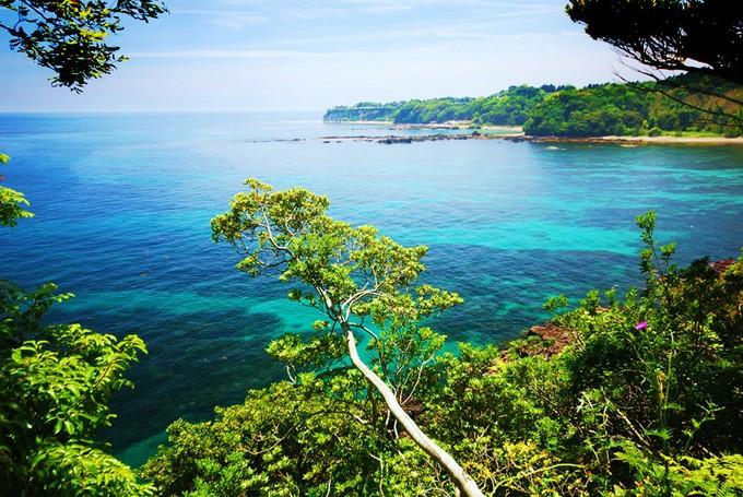 エメラルドグリーンのキレイな海の色!