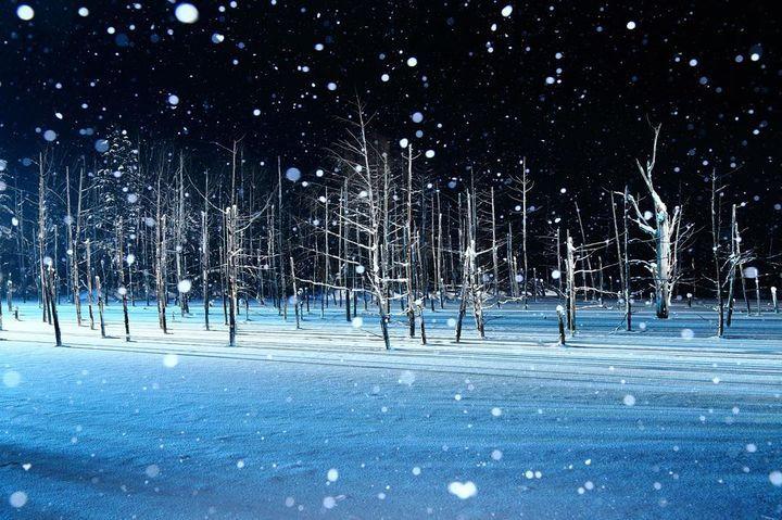 【保存版】一生に一度でいいから訪れたい!都道府県別. もうすぐ冬!