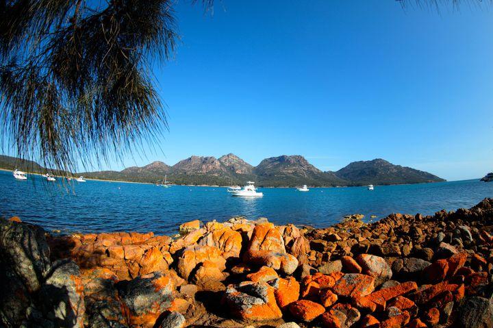 世界で最もピュア&クリーンな島、オーストラリア南東部、タスマニア島のおすすめ観光スポット15選