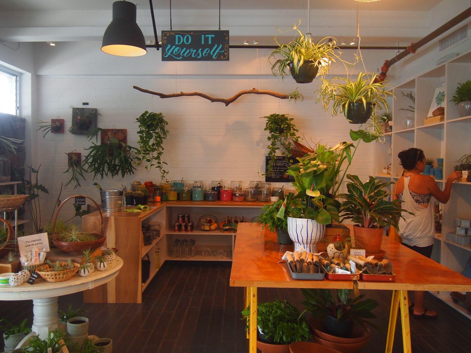 ワード&カカアコエリアには、アーティスティックな気分を盛り上げてくれるオシャレなショップもいっぱい。たとえばこちらのお花屋さん「PAIKO」は、寄せ植えを楽しめるちょっと変わったコンセプトショップ。キラキラ輝くカラフルな石や砂を好みのポットに入れ、そこに観葉植物をアレンジ。自分オリジナルの素敵なお部屋のアクセントが完成します。