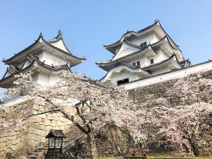 絶対にはずさない!三重県伊賀市の絶対におすすめする観光スポット10選