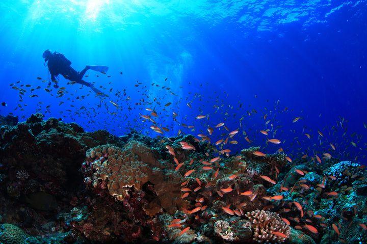 昔ながらの沖縄。本島からフェリーで行く自然溢れる素朴な島「伊平屋島」