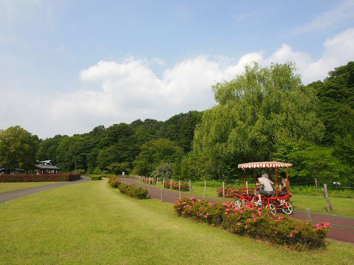 休日に子供とのびのび遊ぼう!栃木県内のおすすめ公園まとめ15選