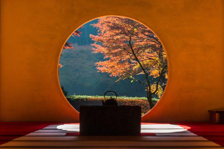 丸窓から覗く幻想的な世界。鎌倉「明月院」の紅葉の美しさに心奪われる