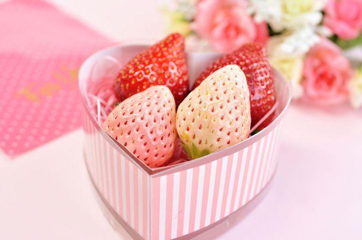 イチゴ好きの天国!「地元民おすすめ」の静岡県イチゴ狩りスポットまとめ