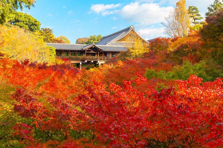 """京都屈指の紅葉スポット!まるで""""燃えるように""""美しい「東福寺」の魅力とは"""