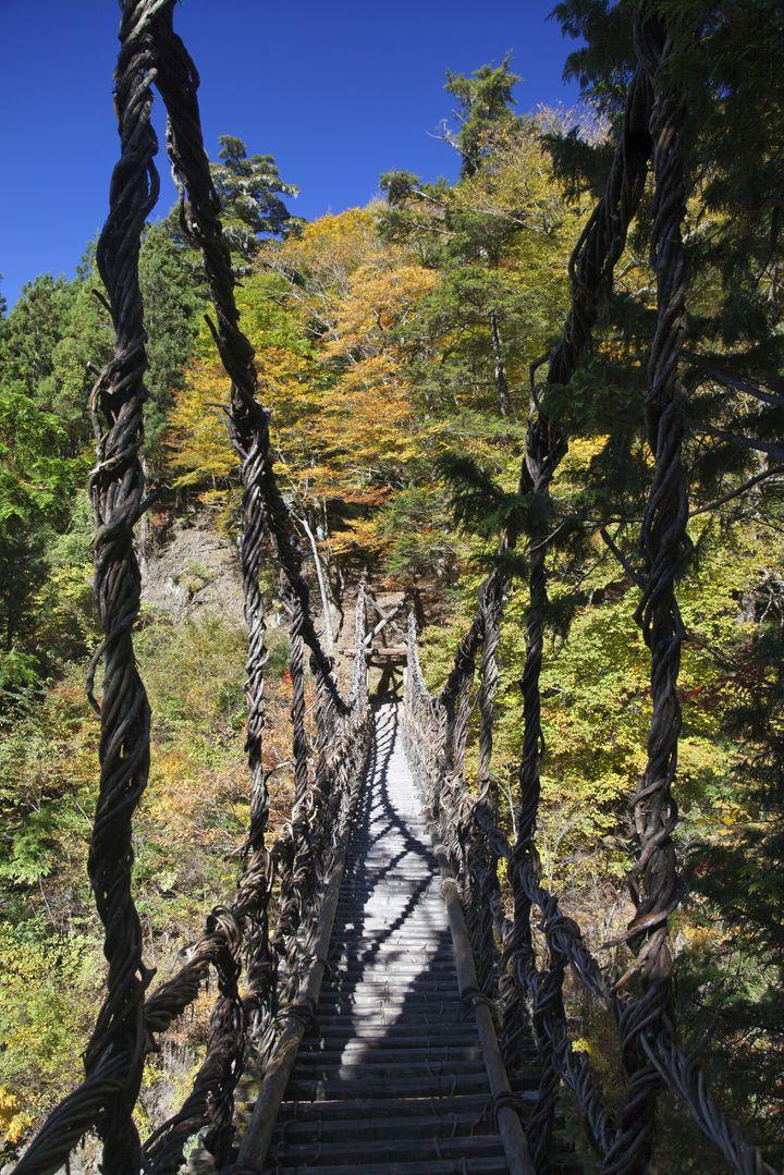 日本一怖い吊り橋!徳島県「奥祖谷(おくいや)の二重かずら橋」がワイルドすぎる