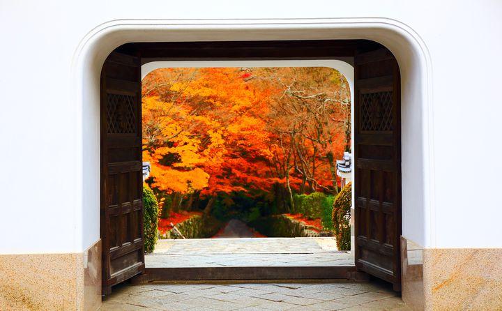 京都の紅葉の穴場スポット!「宇治」で壮大な紅葉と神社仏閣を満喫