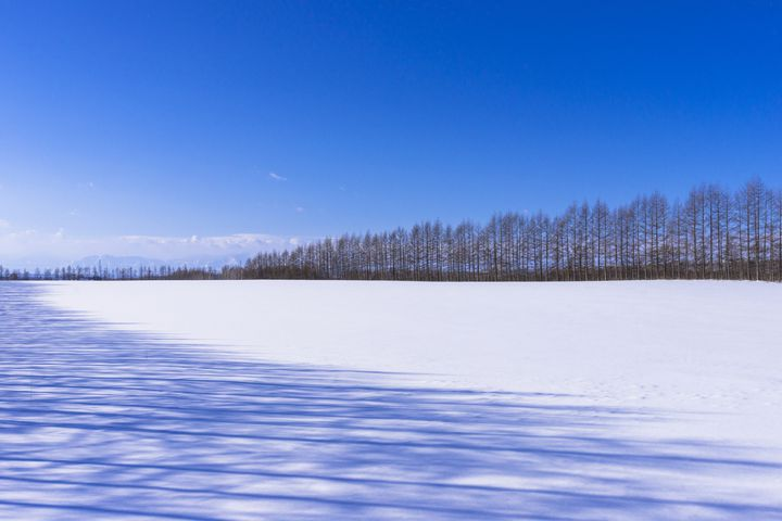 道産子が教える!冬こそ楽しめる北海道おすすめ観光スポット13選