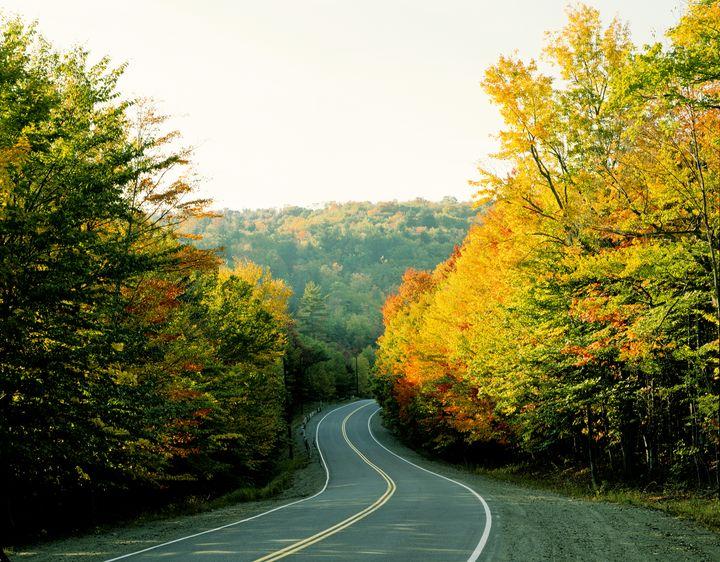800kmの紅葉ドライブ!壮大すぎるカナダ「メープル街道」の紅葉