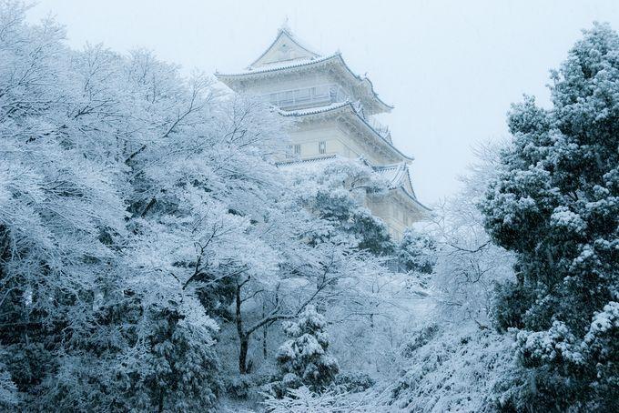 こんな絶景知ってる?知られざる日本の「冬の絶景」7