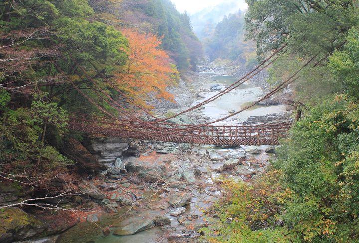 日本三大秘境!徳島県「祖谷渓」は日本一怖い橋や面白スポットも?